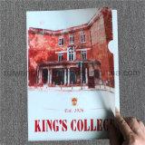 Carpetas de fichero promocionales impresas insignia de encargo de A4 PP