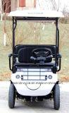 4 Rodas 1200W 6 carrinho de golfe Sightseeing eléctrica do banco para venda