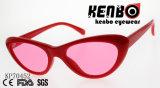 Óculos de olho de gato em um design simples Kp70452