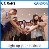 Indicatore luminoso del Governo del LED fatto nell'illuminazione 12V del tubo di sincerità LED della Cina Schang-Hai che fa pubblicità all'indicatore luminoso