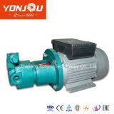 작은 전기 기름 펌프 또는 내부 기어 펌프 (BBG)