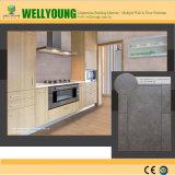 Nuevo azulejo de la pared de la cocina del diseño