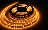 5m High-Brightness Tiras Flexibles LED SMD5730 con la cálida luz/Natural/Cool/blanco de color RGB para distribuidores