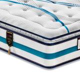 침실 가구 높은 탄소 과료 거품 (FB831)를 가진 강철 봄 매트리스