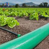 Всасывающей труба зеленого цвета шланга Layflat наборов шланг голубой солнечный