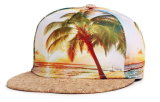 Casquettes de baseball de chapeau de Snapback de chapeau de sport