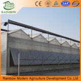 Top Qulaity Agriculture Polycarbonate Covering Green House