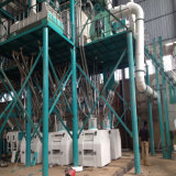 100 toneladas de maíz para Semoulina fresadora Industrial