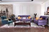 Классицистическая мебель ткани для живущий комнаты