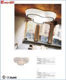 Lámpara pendiente de Haning del nuevo diseño moderno para la vida de interior