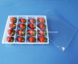 PP 16の穴のプラスチック食糧容器