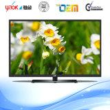 [39-ينش] [د-لد] تلفزيون