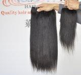 Maleise Uitbreiding van uitstekende kwaliteit 100% van het Haar het Weefsel van het Menselijke Haar
