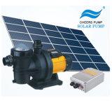 pompa solare solare della piscina della pompa ad acqua di potere basso di 48V 500W