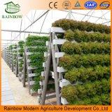 Sistema de hidroponia torre comercial de gases com efeito de cultivo agrícola