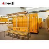 De elektronische die Kasten van het Wachtwoord voor Vestiaires van HPL worden gemaakt