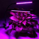 LEDは適用範囲が広いクランプLEDが二重ランプと軽く育てる軽い庭の顕花植物ランプを育てる