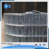 6ゲージの熱い浸された電流を通された溶接された金網のパネル