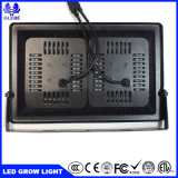 卸し売り100W穂軸LEDは地階のVeg&Fruitのプラントのために軽く育つ