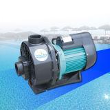 水フィルター循環のプールポンプ