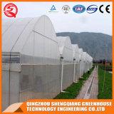 De hoge Plastic Serre van de Brede Spanwijdte van de Tunnel met Hydroponic Systeem