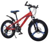 21 de aço carbono de alta velocidade da montanha de adultos aluguer de bicicletas de montanha
