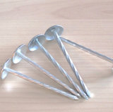 직류 전기를 통한 우산 헤드 꼬이는 정강이 루핑 못