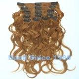 Clip en la extensión ondulada del pelo de Remy en color popular