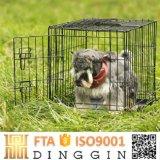 ISO9001 Wirehouse каркас для домашних животных с 2 дверей