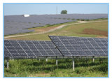 Hohe Leistungsfähigkeits-elektrische Verkleidungs-Solarzellen