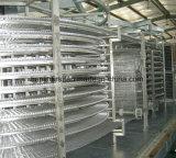 Máquina de congelação rápida dobro da espiral IQF para peixes