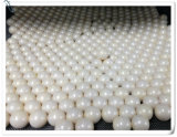 卸し売り白0.68インチのトーナメントPaintballs/の優れたペンキの球
