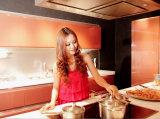 Acabado de laca de color alta brillo de la cocina anti-rasguño (zz-021)