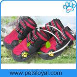 Sapatas frescas do cão de animal de estimação do verão luxuoso do produto da fonte do animal de estimação do fabricante