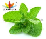 Tadellose Aroma-Nachfüllungs-flüssiges Konzentrat für DIY E flüssigen organischen erstklassigen GroßhandelsVaporever E Saft mit freiem Soem-Service