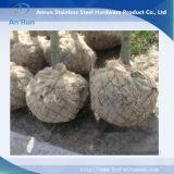 Cestini tessuti della rete metallica della protezione della radice dell'albero di collegamento Chain