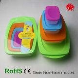 Plastiknahrungsmittelbehälter des Form-Umweltausgangspp. (PT91268)