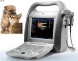 De veterinaire Digitale Kleur Doppler van het Instrument van de Ultrasone klank Kenmerkende (Dierenarts DCU-10)
