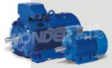 Wy (IE1) Estándar trifásico de inducción de la eficiencia de los motores de hierro fundido