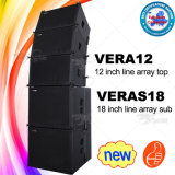 Guangzhou-PROaudiolieferant Skytone Vera12 Zeile Gerät des Reihen-Systems-DJ