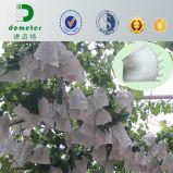 제조자 튼튼한 방수 포도 포도 과일 성장하고 있는 보호 종이 봉지