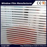 Sparkle de cine 3D de la ventana de la Oficina de 1,22m*50m