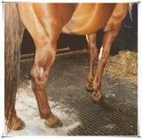 Tiergummimatte, Kuh-Gummimatte, Pferden-Gummimatte (GM0421)
