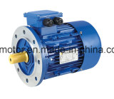 Dos ml 0,75 kW Condensador monofásico Motor eléctrico