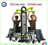 Strumentazione Handicapped di forma fisica della sosta di Grm del campo da giuoco esterno Disabled