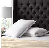 100% хлопок Shell Queen Size вниз подушку с помощью свежего обращения