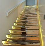 LED-moderne Treppen-Installationssätze, die Treppenhaus mit Hartglas-Schritt schwimmen