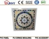 Panneau de plafond en plastique de panneau en plastique de panneau de mur de PVC de plafond de PVC d'impression Cielo Raso De PVC