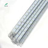 좋은 가격 13m 녹색 LED 끈 유성 빛 관 빛