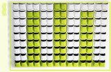 Selbst-Wässernpflanzenblumen-Potenziometer-Wand, die Plastikpflanzer-Haus-Garten hängt